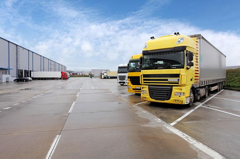 Nawet 40 proc. samochodów ciężarowych nie realizuje transportów. /123RF/PICSEL