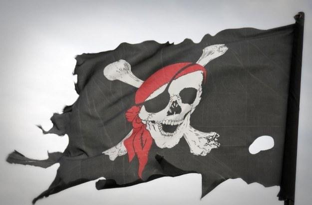 Nawet amerykański rząd dopuszcza się aktów piractwa /123RF/PICSEL