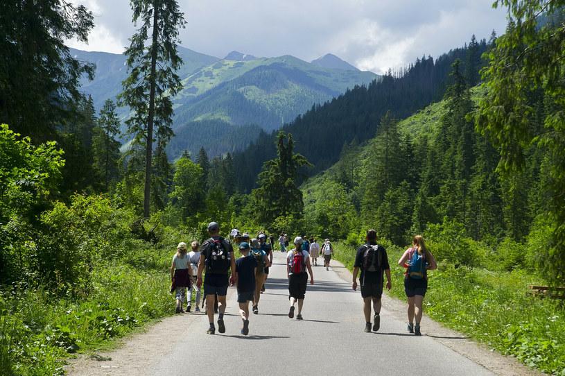 Nawet na najprostszych szlakach górskich może dojść do wypadku. Dlatego warto mieć w plecaku apteczkę oraz znać numer ratunkowy GOPR lub TOPR /Stanisław Bielski /Reporter