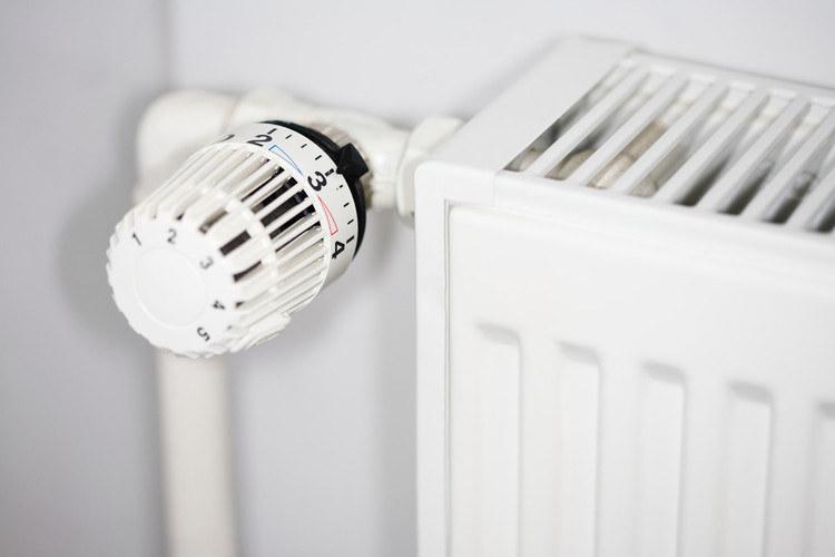 nawilżanie powietrza w mieszkaniu /© Photogenica