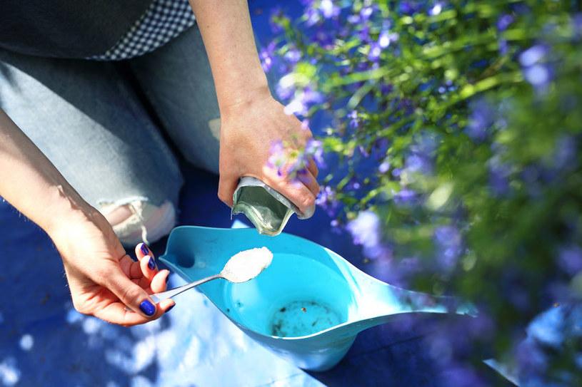 Nawożenie roślin /©123RF/PICSEL