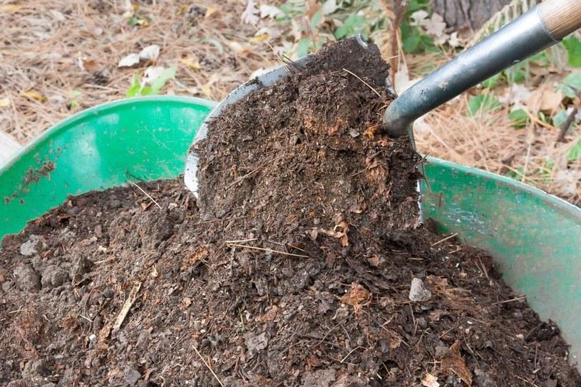 Nawozy organiczne zwiększają ilość próchnicy /123RF/PICSEL
