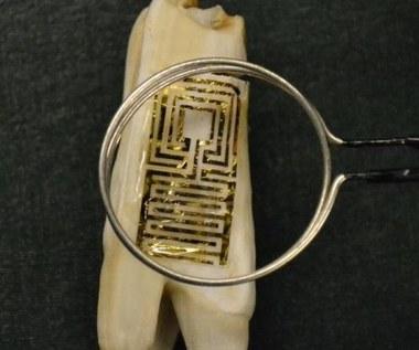 Nazębne tatuaże uwolnią nas od dentystów