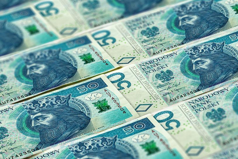 NBP: Coraz mniej fałszywych banknotów w Polsce /123RF/PICSEL