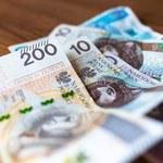 NBP: Liczba banknotów w Polsce podwoiła się w ciągu dekady