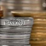 NBP: Raport o stabilności systemu finansowego w Polsce