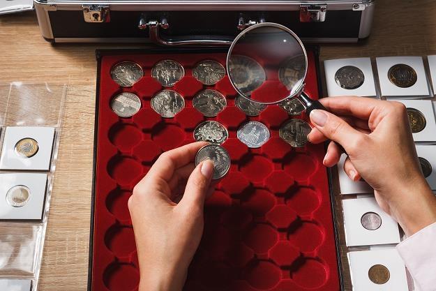 NBP szykuje 20 monet kolekcjonerskich w 2020 roku /©123RF/PICSEL