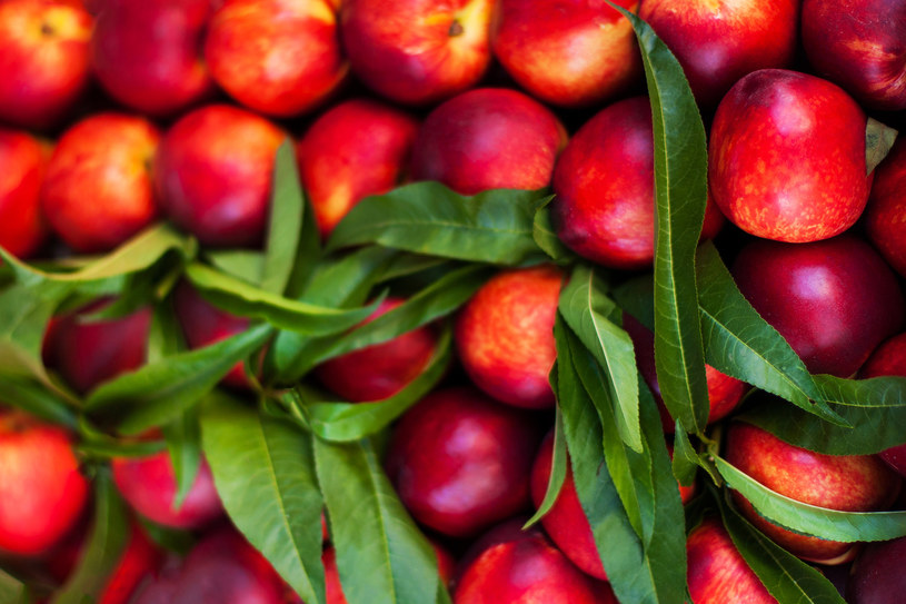 Nektarynki nie bez powodu nazywane są owocami młodości /123RF/PICSEL