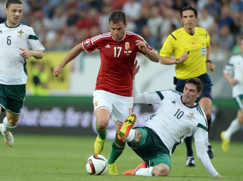Nemanja Nikolić w barwach narodowej drużyny Węgier /AFP