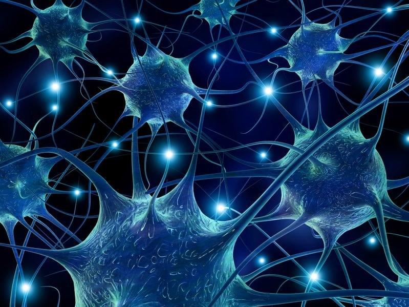 Neurony w mózgu /©123RF/PICSEL