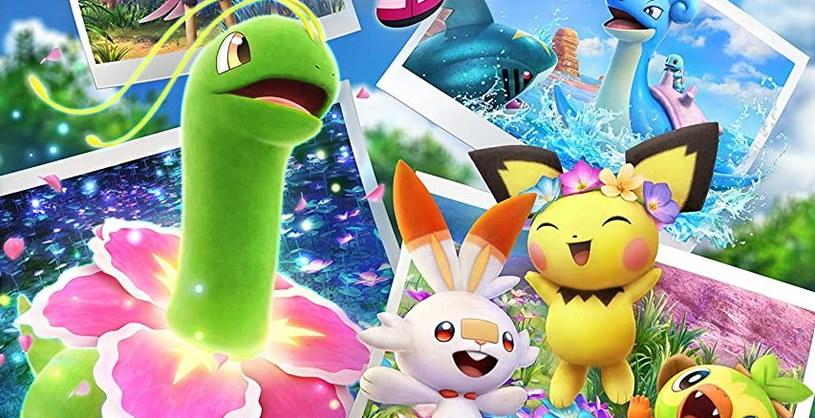 New Pokemon Snap /materiały prasowe