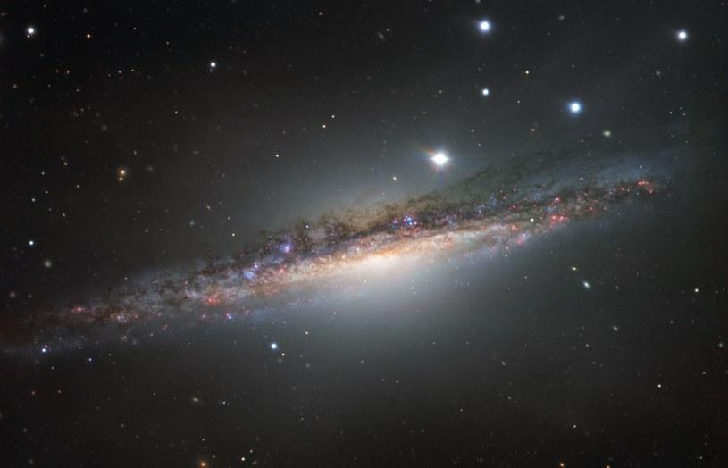 NGC 1055 /materiały prasowe