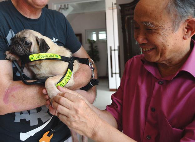 Nguyen Bao Sinh jest wlaścicielem pierwszej w Wietnamie hodowli i hotelu dla psów /AFP