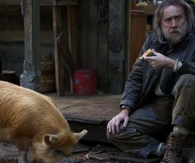 Nicolas Cage zagrał poszukiwacza trufli