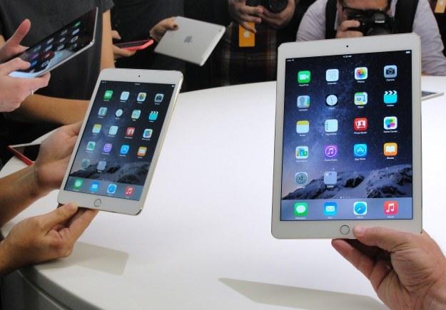 Nie będzie nowego iPada Air? /AFP