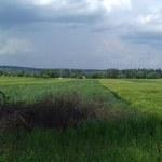 Nie będzie oczyszczania skażonej ziemi w Krakowie. Urzędnicy się nie zgodzili