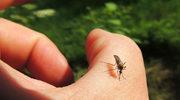 Nie daj się komarom