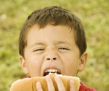 Nie dawaj dzieciom hot dogów – oto dlaczego!