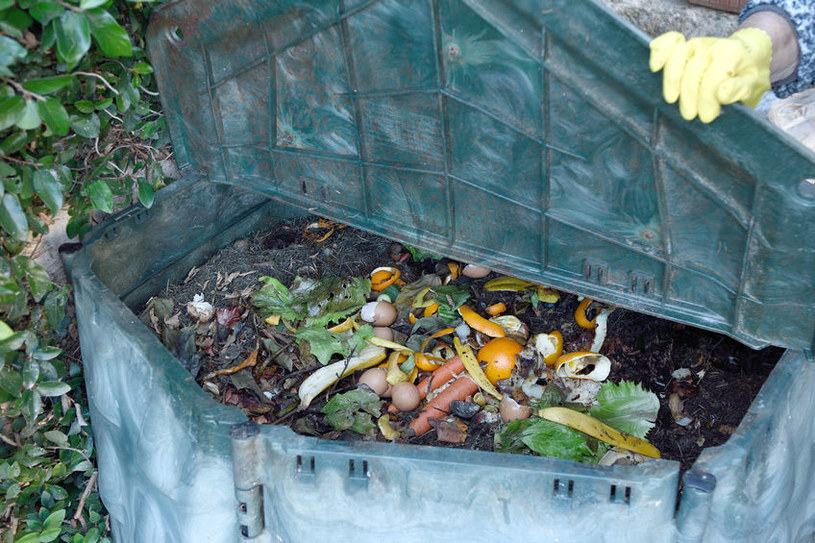 Nie gromadź kompostu pod domem /©123RF/PICSEL