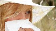 Nie kichaj na alergię