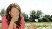 Nie kichaj na wiosnę