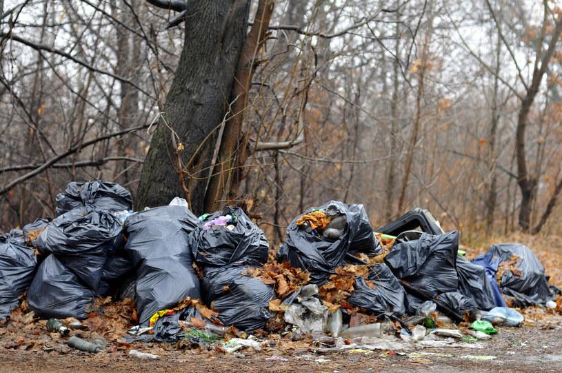 """""""Nie ma zgody na bezkarność za śmiecenie czy niszczenie środowiska w większej skali"""" /Piotr Kamionka /Reporter"""