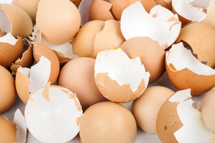 Nie sól wody gotując jajka. Skorupki dodaj do kwiatów /123RF/PICSEL