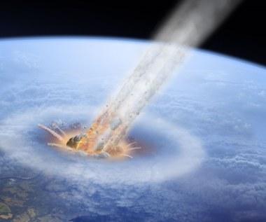 Nie tylko asteroida. Co jeszcze przyczyniło się do masowego wymierania gatunków?