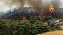 Nie tylko Etna. Włoscy strażacy walczą z pożarami na terenie Sycylii i Kalabrii
