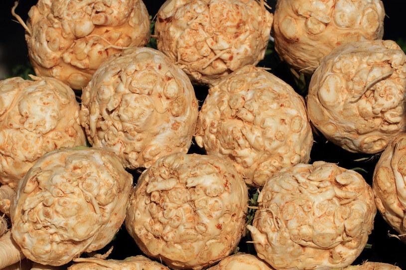 Nie tylko rosół czy sałatka jarzynowa - seler wzbogaci smak wielu innych potraw /123RF/PICSEL