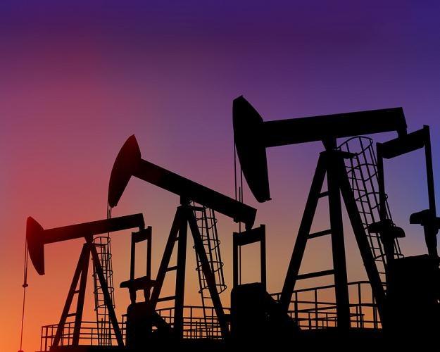 Nie wiadomo, czy ropa naftowa jest tylko droga czy już bardzo droga /© Panthermedia