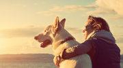 Nie wiesz, jakiego psa wybrać? Sprawdź swój znak zodiaku!