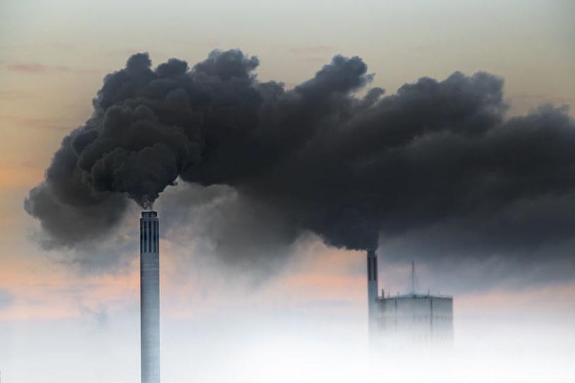 Nie wszyscy chcą inwestować w projekty niszczące środowisko /123RF/PICSEL