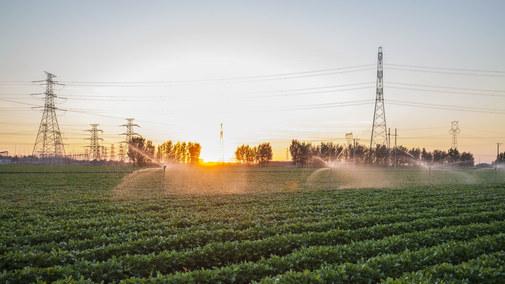 Nie wszyscy rolnicy dostaną rekompensaty za prąd