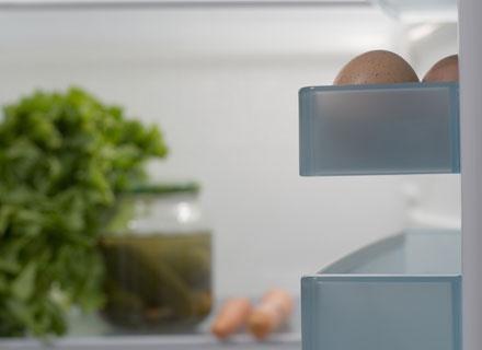 Nie wszystkie produkty żywnościowe można przechowywac w lodówce przez dłuższy  czas /© Panthermedia