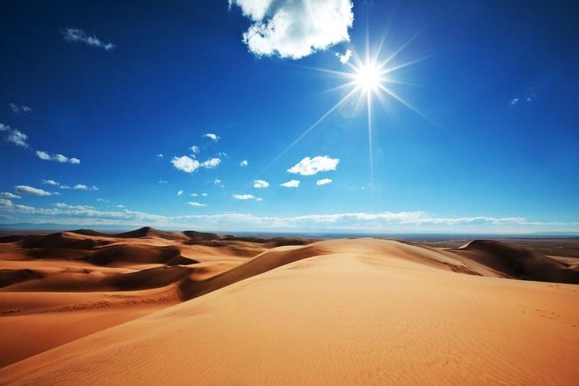 Nie zawsze Sahara była tak suchym i niegościnnym miejscem /123RF/PICSEL