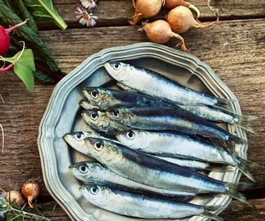 Niebieskie ryby: Gatunki i właściwości