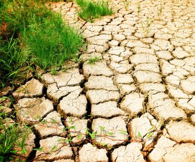 Niedobór wody w Polsce. Największa susza na zachodzie