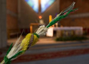Niedziela Palmowa. Kościół katolicki rozpoczyna Wielki Tydzień