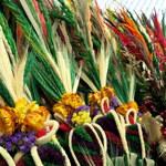 Niedziela Palmowa rozpoczyna Wielki Tydzień. To też Światowy Dzień Młodzieży