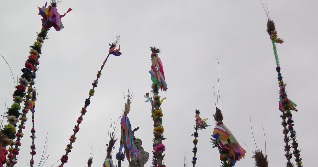 Niedziela palmowa w Lipnicy Murowanej