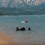 Niedźwiedzie zaskoczyły turystów. Kąpały się w jeziorze! - wideo
