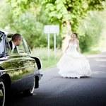 Niefortunny powrót z podróży poślubnej
