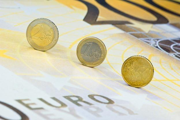 Niektóre europejskie banki centralne przygotowują plany ratunkowe na wypadek rozpadu eurolandu /© Panthermedia