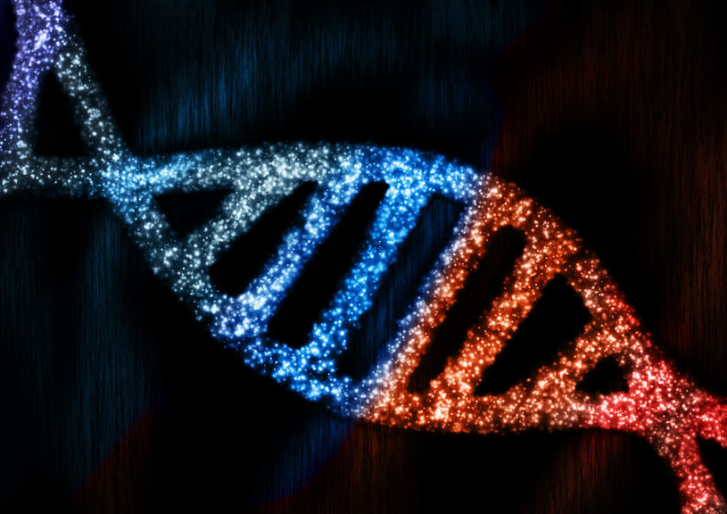 """Niektóre ludzkie geny pochodzą od """"obcych"""" organizmów /123RF/PICSEL"""