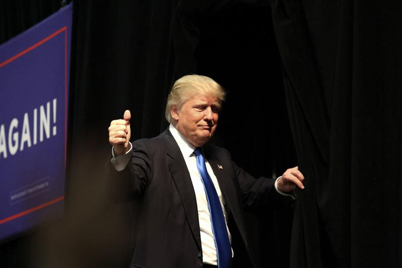 Niektóre sondaże pokazują, że Donald Trump wysunął się nieznacznie na czoło /AFP