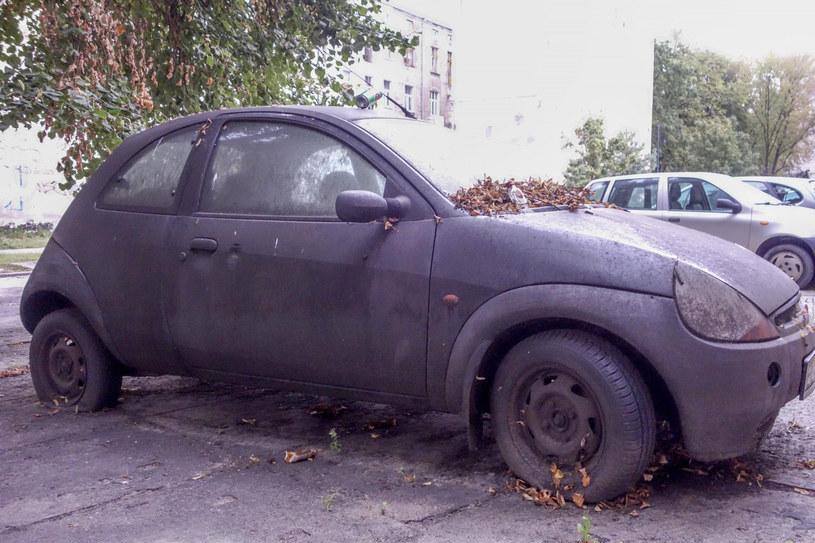 Niektóre wraki dogorywają na parkingach, z innych zostały szczątki po lasach. Jeszcze inne zostały rozebrane na części. W sumie to 8 mln aut /Piotr Kamionka /Reporter
