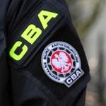 Nielegalne oprogramowanie w Sejmie. CBA zatrzymało troje biznesmenów