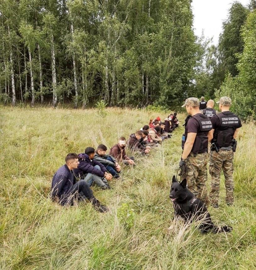 Nielegalni imigranci na granicy polsko-białoruskiej /Straż Graniczna /materiały prasowe