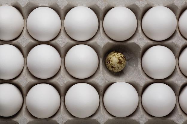 Nielegalny handel zepsutymi jajkami. Trafiają na nasze stoły /poboczem.pl